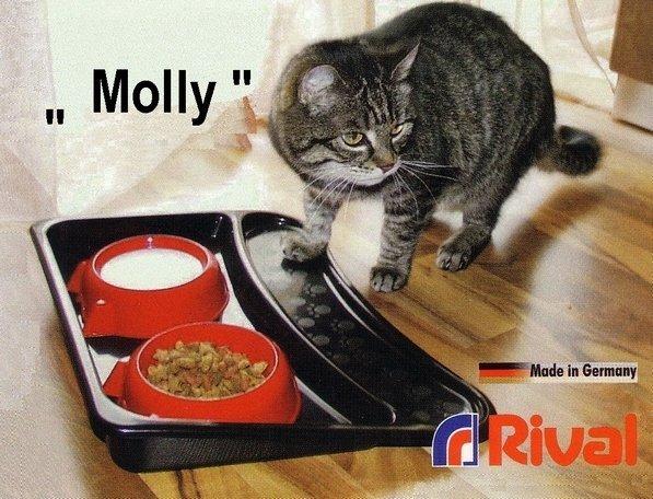 set-trays-with-tray-rival-molly-906000