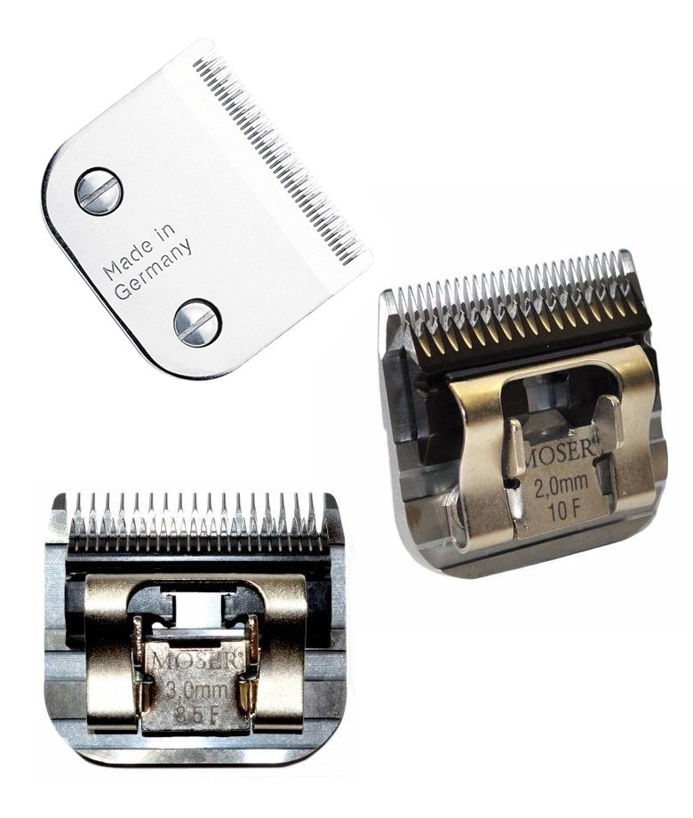 moser-max-set-of-clipper-heads
